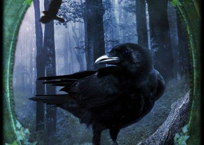 Crow - Sovereignty