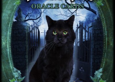 Witches' Familiars Oracle Cards Master