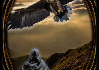 Eagle - Intent Focus
