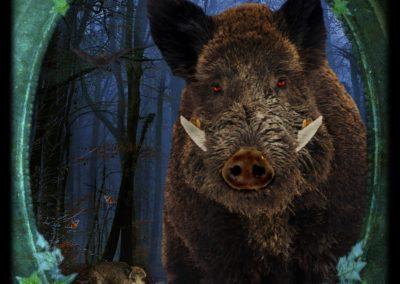 Boar - Ferocity